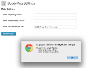 Example of use of a JS in your plugin's settings page