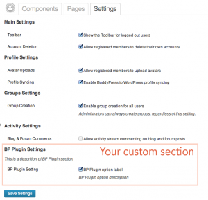 A custom section for your plugin's option