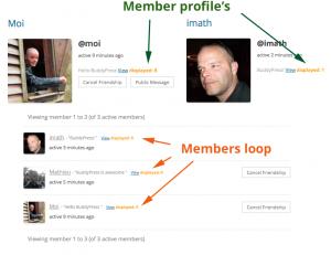 bp_displayed_user_id() and the members loop
