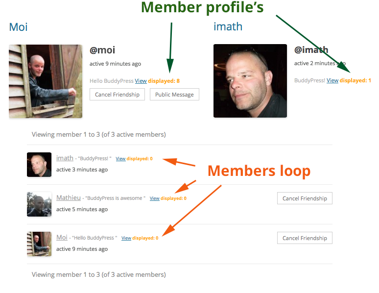 member profile template