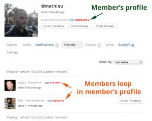 Members loop in member's profile : friends
